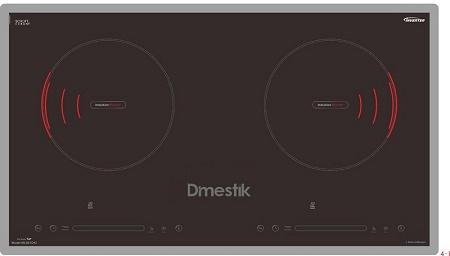 Bếp Từ Dmestik ES555 DKI